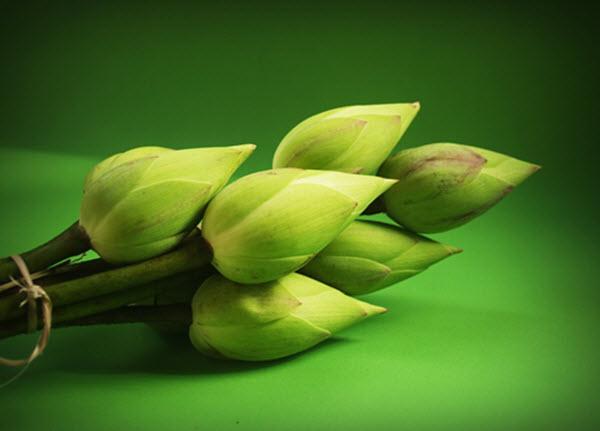 lotus-1550951_960_720